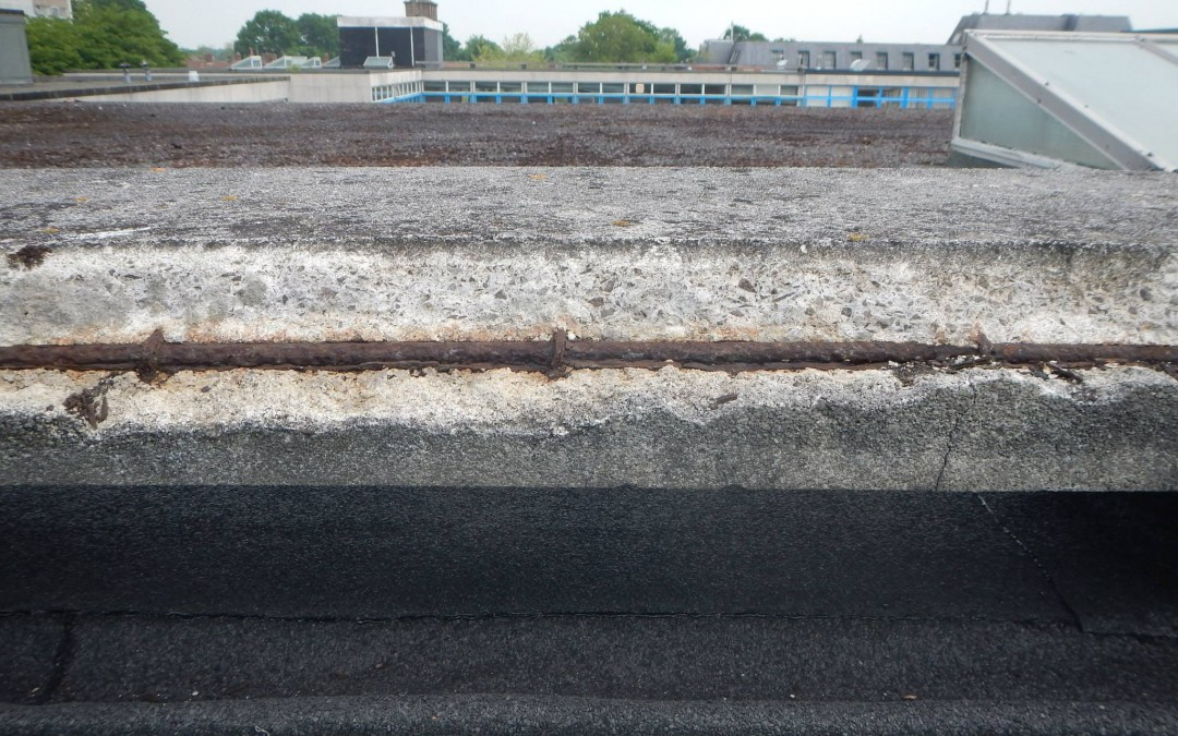 Structural Concrete Defects and Damage